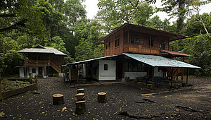 Feldstation in Tangkoko