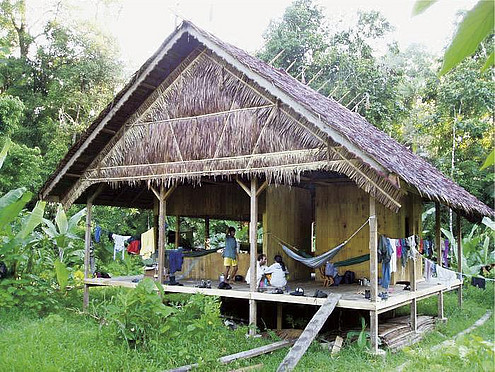 The Siberut Field Station was implemented in order to study and protect monkeys in Indonesia. Image: DPZ