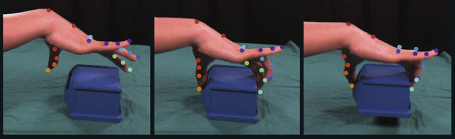 Detailed video-based recording of the movement of all finger joints of a hand when gripping an object using artificial intelligence. Photo: Swathi Sheshadri