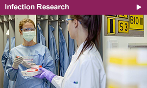 The section Infection Research researches viruses like HIV, influenza (flu) and ebola and newly emerging viruses. Additionally, illnesses caused by bacteria and parasites are investigated.